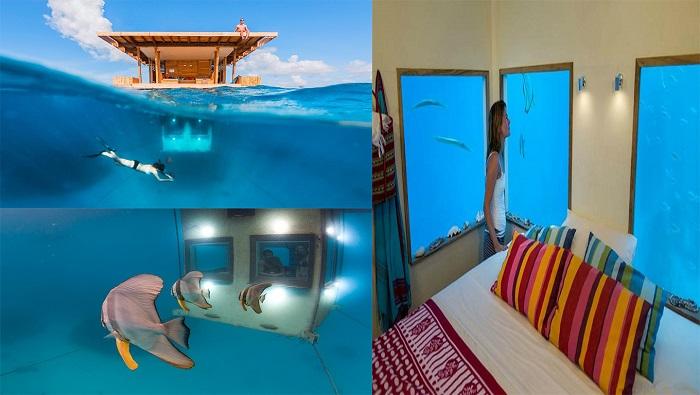 মান্টা রিসোর্ট - পেম্বা দ্বীপ, The Manta Resort - Pemba Island
